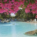 Park Resort piscina
