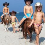 Resort Horse Country Escursione miniponi