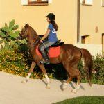 Alghero Resort Country Hotel Escursione